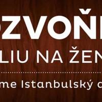 Rodové vzdelávanie - Istanbulský dohovor