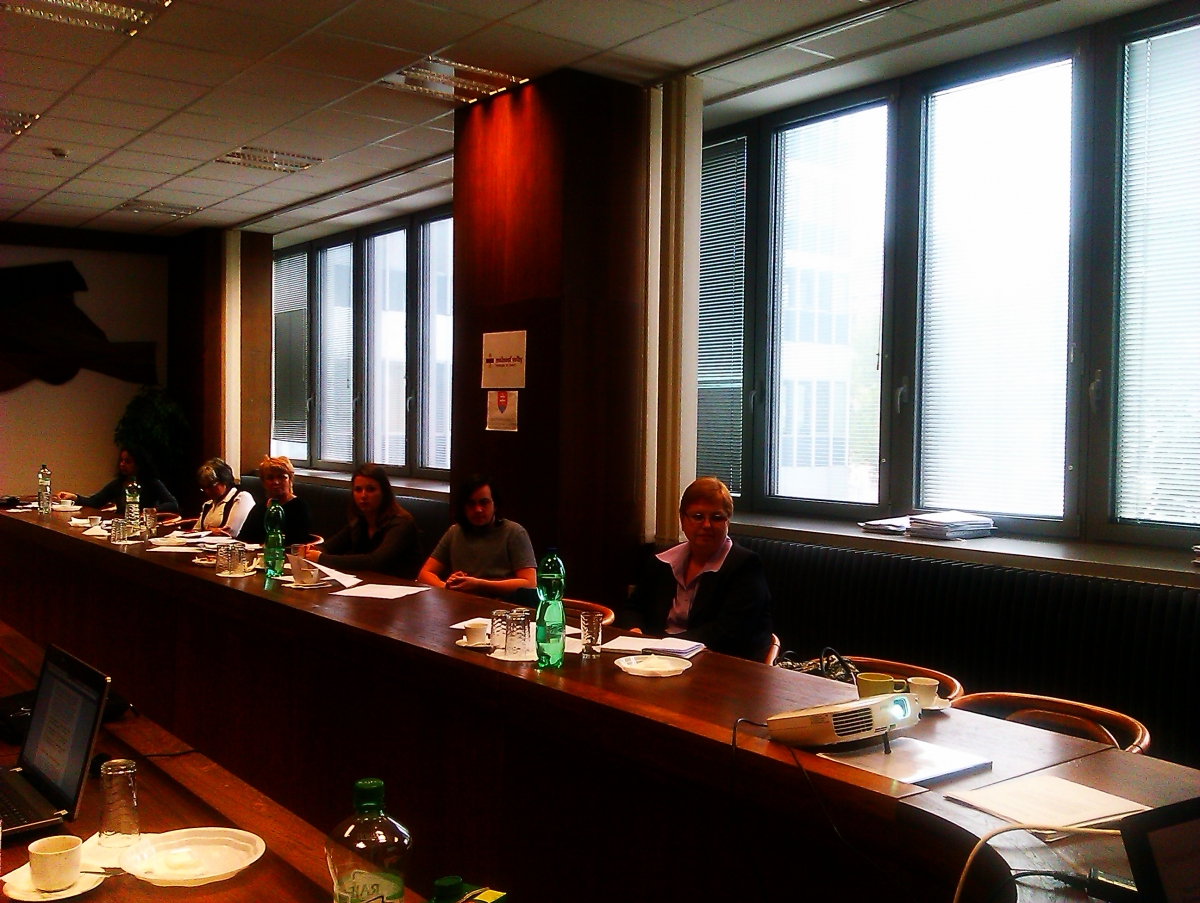 Implementácia Dohovoru o odstránení všetkých foriem diskriminácie žien ako výzva pre prácu Výboru pre rodovú rovnosť